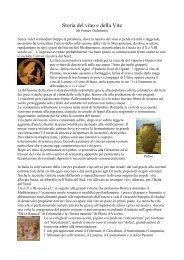 Storia del vino e della Vite - Vini Merlotta