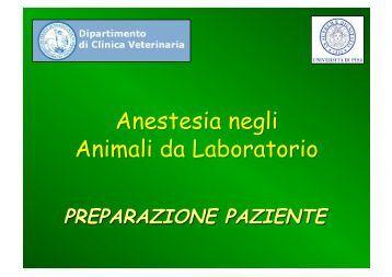 Allestimento per l'anestesia - Preparazione del paziente