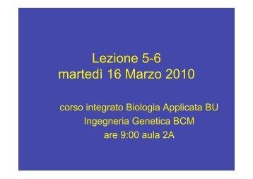 Lez 5-6 BioIng 16-3-10