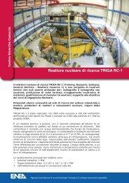 Reattore nucleare di ricerca TRIGA RC-1 - Enea
