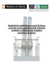 Impianti di combustione a scarti di legno: controllo tecnico ... - Arpav