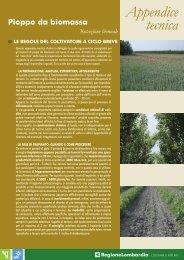 pioppo da biomassa rot. biennale.pdf - Progetto Energie Rinnovabili