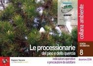 8 Le processionarie - Comune di San Gimignano