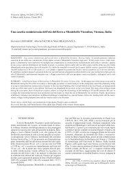 Scarica pdf - Museo Tridentino di Scienze Naturali