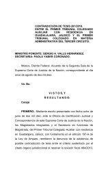 SERGIO A. VALLS HERNÁNDEZ - SCJN