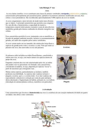 Aula Biologia 2º Ano Aves As aves (latim científico: Aves) constituem ...