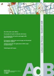 Download Quaderno AdB 1/2007 - Autorità di Bacino Regionale del ...