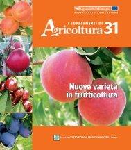 Nuove varietà in frutticoltura Nuove varietà in ... - Ermes Agricoltura