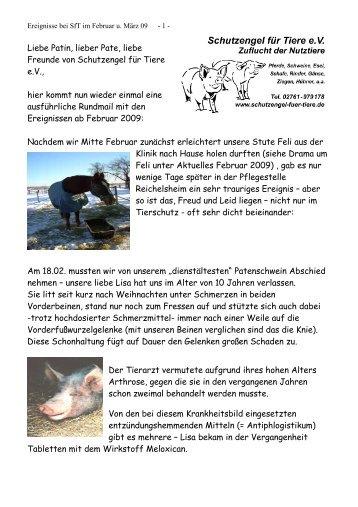 Liebe Patin, lieber Pate, liebe Freunde von Schutzengel für Tiere eV ...