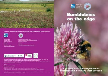 Bumblebees on the edge - Scottish Natural Heritage