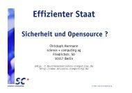 Effizienter Staat - Science und Computing AG
