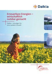 Erneuerbare Energien – wirtschaftlich nutzbar gemacht - Dalkia