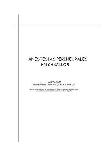 ANESTESIAS PERINEURALES EN CABALLOS