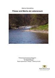 Flüsse und Bäche als Lebensraum