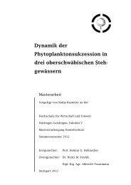 Masterarbeit Copyshop - Aktionsprogramm Sanierung ...