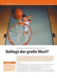 Software-Vertrieb - frisbee marketing