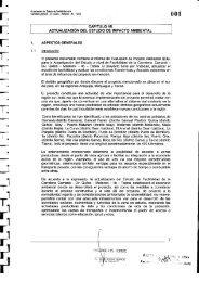 Resumen Ejecutivo - Ministerio de Transportes y Comunicaciones