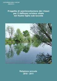 Relazione 2° anno - ORS - Regione Lombardia