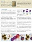 allergy indications - Heel BHI - Page 2