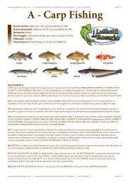 A - Carp Fishing - i Laghetti del Rosario