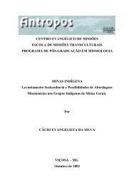 SEGUNDA PARTE Minas Indígena - Instituto ANTROPOS