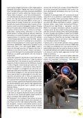 Giugno - Circhi - Page 5