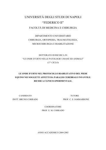Le onde d'urto nel protocollo riabilitativo del - FedOA - Università ...