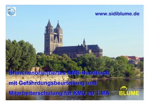 Branchenorientiertes AMS-Handbuch mit ... - Sidi Blume
