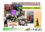 Arbeits- und Gesundheitsschutz bei der ... - Sidi Blume