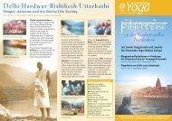 Delhi/Hardwar/Rishikesh/Uttarkashi - Sivananda Yoga