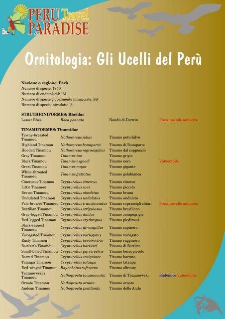 Ornitologia: Gli Ucelli del Perù - Peru Paradise Travel