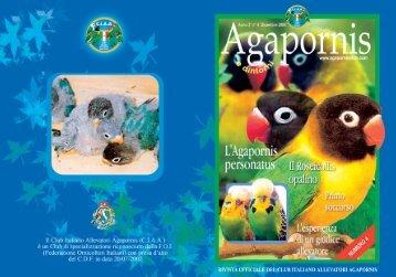 RIVISTA AGAPORNIS LUGLIO2004