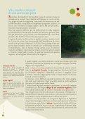 Nocciolands - Associazione Nazionale Città della Nocciola - Page 6