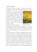 LO O ZAFF SIC ERANO CILIA O IN - Programme Med - Page 5