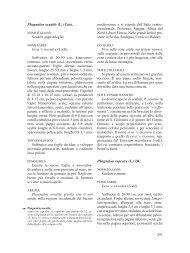 Sezione dodicesima [file .pdf - 8 Mb] - SardegnaAmbiente