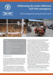 Addressing the avian influenza A(H7N9) emergency