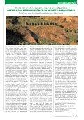 La Voce dell'Accademia del pizzocchero di Teglio - Fondazione ... - Page 5
