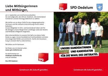 SPD Oedelum - SPD Schellerten