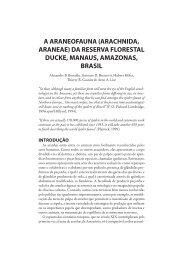 da reserva florestal ducke, manaus, amazonas, brasil - Staatliches ...