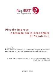 Piccole impresse e tessuto socio-economico di Napoli Est - NaplEST
