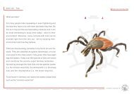 ZoS 122 · Tick What are ticks? For many people ticks ... - SOMSO