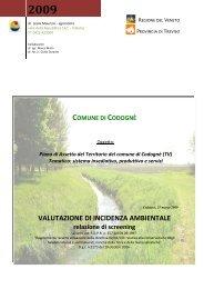 2009 - Comune di Codognè