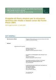 Progetto di Piano stralcio per la sicurezza idraulica del ... - Gruppo 183