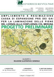 All1 - Relazione illustrativa generale - VAS FVG Alto Livenza
