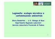 Legionella: ecologia microbica e contaminazione ambientale