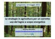 Giustino Mezzalira Veneto Agricoltura - Professione Legno Energia