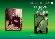 FITOFAGI DEL FAGIOLO - Regione Campania