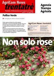 Leggi... - MEDIASTUDIO Giornalismo & Comunicazione