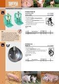 Catalogus 2012 varkens - SUEVIA HAIGES GmbH - Page 6