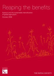 Reaping the benefits: Science and the sustainable intensification of ...